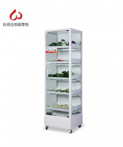广东常温蔬菜零售柜
